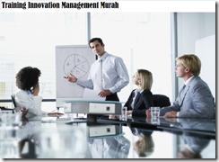 training sistem manajemen inovasi murah